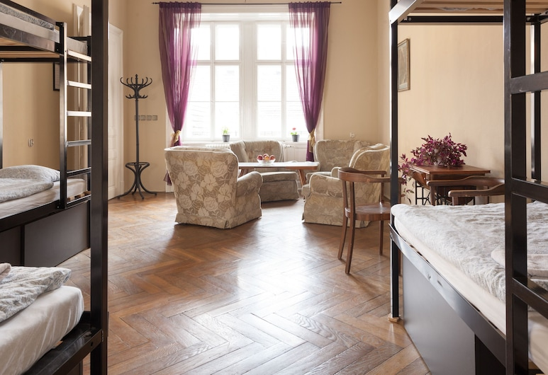 Hostel Fléda, Brno, Single Bed in 6-Bed Walk Through Shared Dormitory, Mixed Dorm, Guest Room