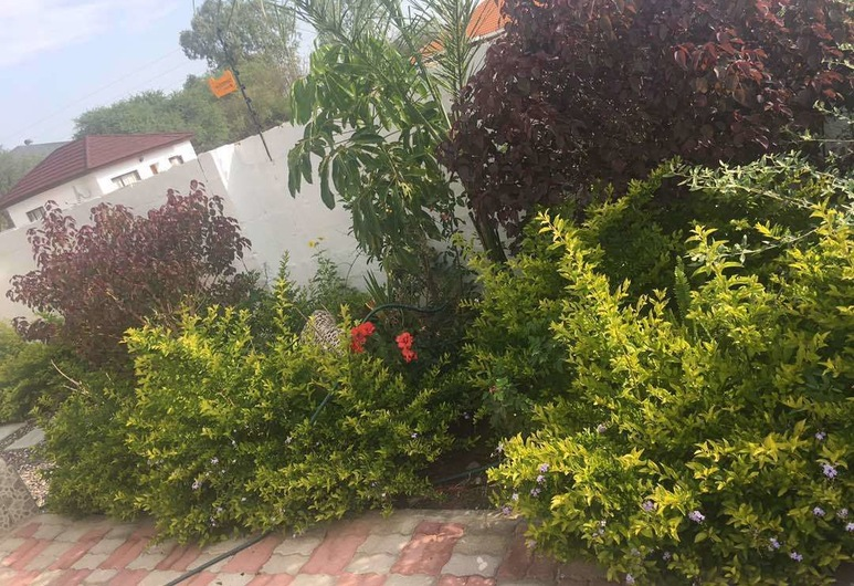 Eagle Suites Guest House, Ghanzi, Garten