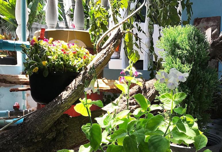 シラズ ハウス, バンコク, 庭園