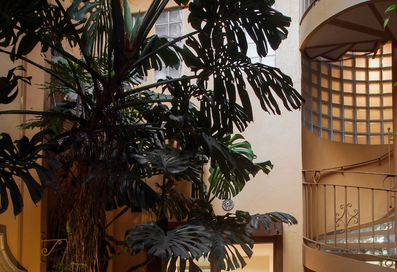Chalet del Carmen Coyoacán, Mexiko-Stadt, Premium-Suite, 1King-Bett, Zimmer