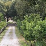 A szálláshely külső területe