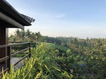 Slika: Soulshine Bali ‒ Mas