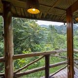Standartinio tipo kambarys - Vaizdas į parką