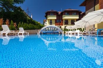 Picture of Vila Barović and Spa in Zlatibor