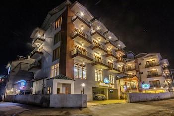 Gambar Hill County Resort & Spa, Manali di Manali