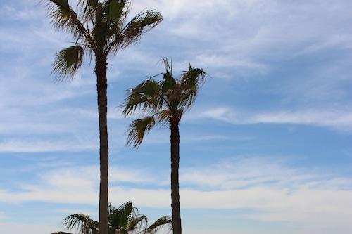 カスティロスデルマールのビーチハウス豪華なオーシャンフロントコミュニティ/
