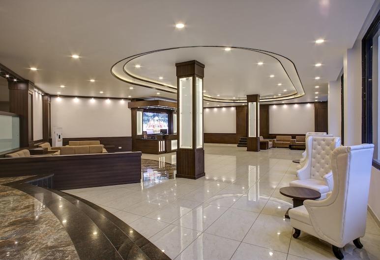 Hotel The Royal Krishna, Katra, Lobby Sitting Area
