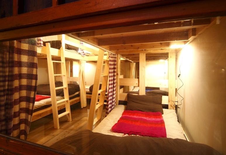 Tokyo Hikari Guesthouse - Hostel, Tokio, Dormitorio compartido, solo para mujeres, Habitación