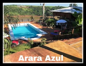 Foto van Arara Azul in Puerto Iguazú
