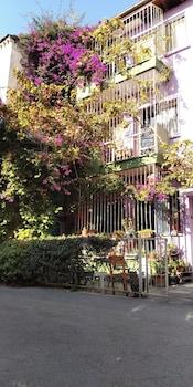 伊士麥香緹之家青年旅舍的圖片