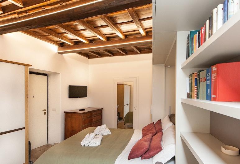 阿雷努拉開放式公寓羅馬出租屋酒店, 羅馬, 經典開放式客房, 客房