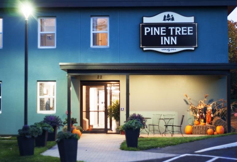 Pine Tree Inn, Bangor