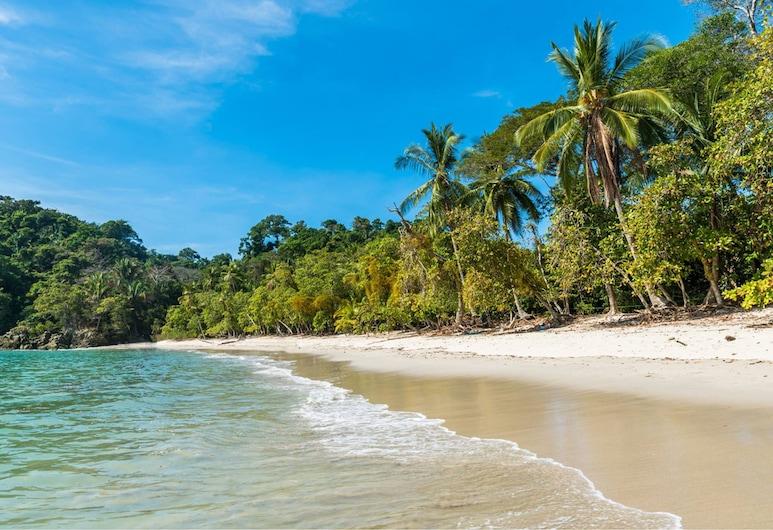 Buena Vista Beach Villas, Manuel Antonio, Praia