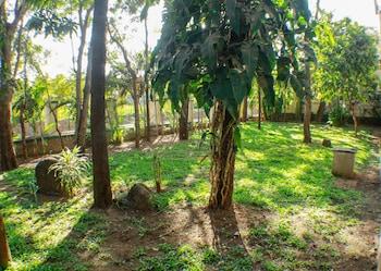 Picture of Rainwood  Residency in Pune