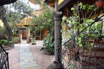 Picture of La Medusa in Guanajuato