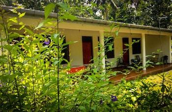 A(z) Deer Garden Guest hotel fényképe itt: Polonnaruwa