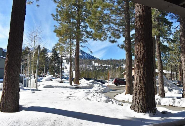 The Summit 288, Mammoth Lakes, Condo, 1 Bedroom, Property Grounds
