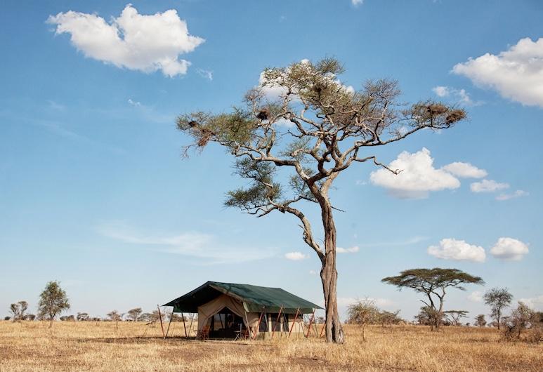 Pumzika Luxury Safari Camp - East Africa Camps, Parque Nacional de Serengueti, Áreas del establecimiento