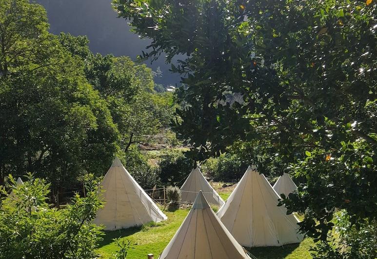 Nature inn Madeira - Glamping, Порто-Мониц, Вид на сад