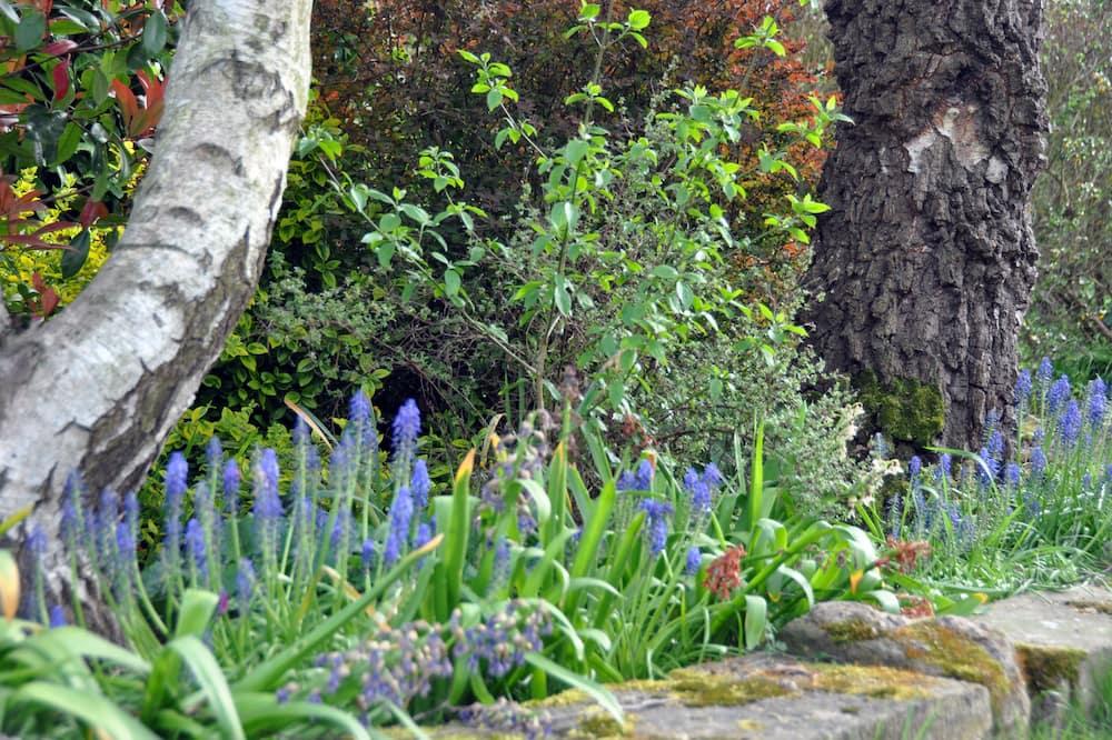 Quarto Quádruplo Familiar, 1 Quarto, Vista Jardim - Vista para o Jardim