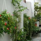 חדר זוגי, נוף לגן - נוף לגן