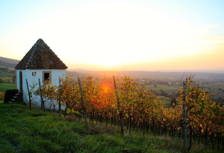 Artist's House in the Middle of the Vineyard on the Edge of the Schawarzwald, Мюльхайм