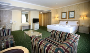 安卡拉尼瓦帕拉斯飯店的相片