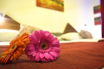 Hotellitarjoukset – Xalapa