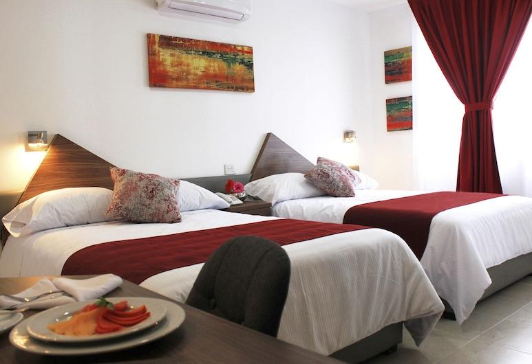 ASTRO INN HOTEL EXPRESS, Xalapa, Habitación doble estándar, Habitación