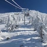 スノー スポーツとスキー