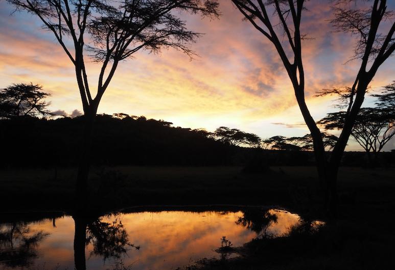 ليوبارد هيل, Maasai Mara, المنطقة المحيطة بالمنشأة