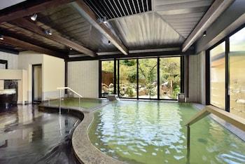 Picture of Hakone Kogen Hotel in Hakone