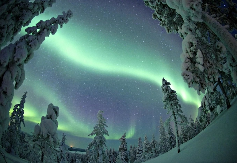 LOMAVEKARIT, Rovaniemi, Hiking