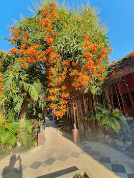 Vang Vieng bölgesindeki Vang Vieng Garden Bungalow resmi