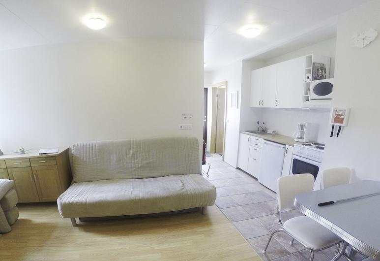 弗魯格魯德公寓酒店, 塞爾福斯, 公寓, 1 間臥室, 客廳