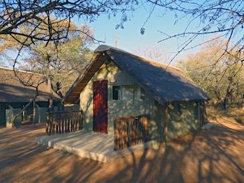 Picture of Wild Dogs Safari Lodge in Hoedspruit