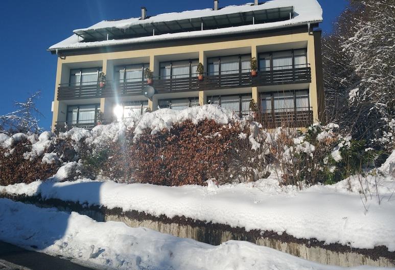 Panorama Hotel Pension Frohnau, Bad Sachsa, Hotel homlokzata