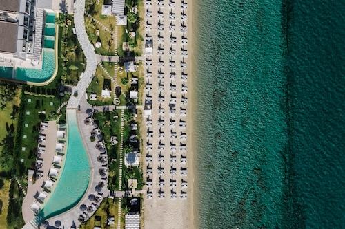 藍地毯奢華套房飯店/