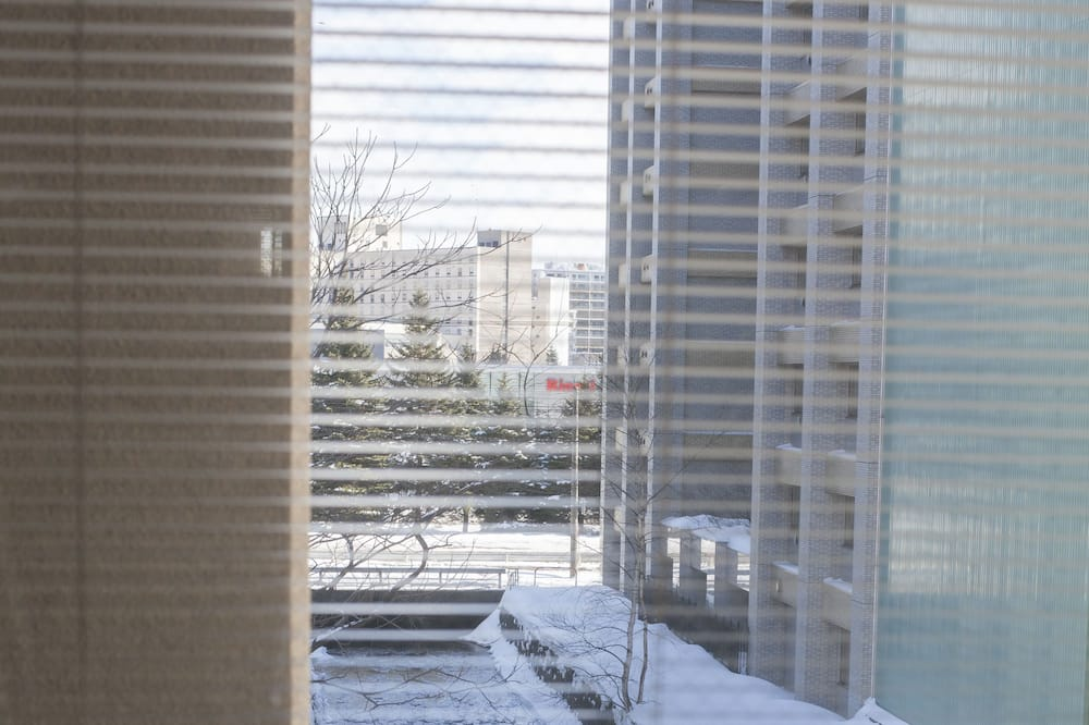 一棟貸し (4ベッドルーム+5トイレ+4お風呂+3キッチン) - 客室からの景色