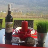 Exclusive holiday home with sauna, quiet, sunny panoramic location with a view of the Moselle