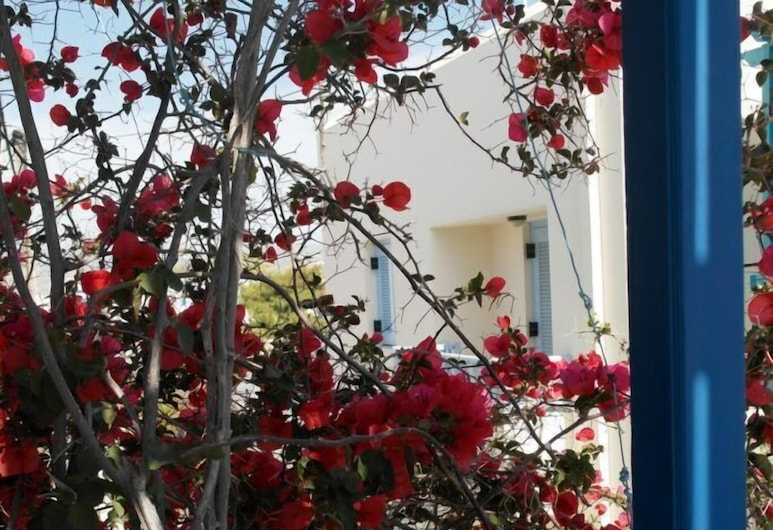 Pigasos Studios, Naxos, Garden
