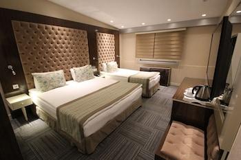 ภาพ Ankara Gold Hotel ใน อังการา