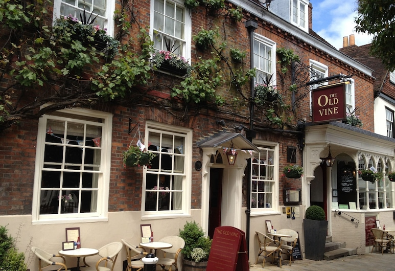 The Old Vine, Winchester