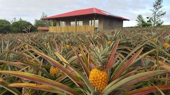 Hình ảnh Maunga roa eco lodge tại Hanga Roa