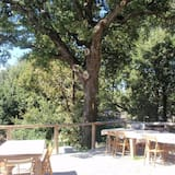 Einestamine vabas õhus