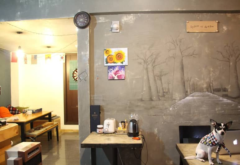 Backpacker's House - Hostel, Busan, Interior Hotel