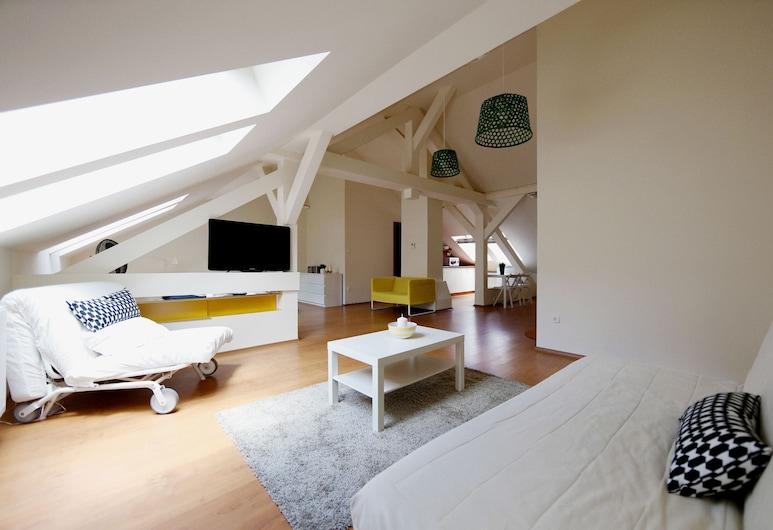 Dfive Apartments - Aranykez, Budapešť, Izba typu Basic, Izba