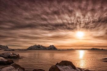Foto van Marina Hotell Lofoten in Vågan