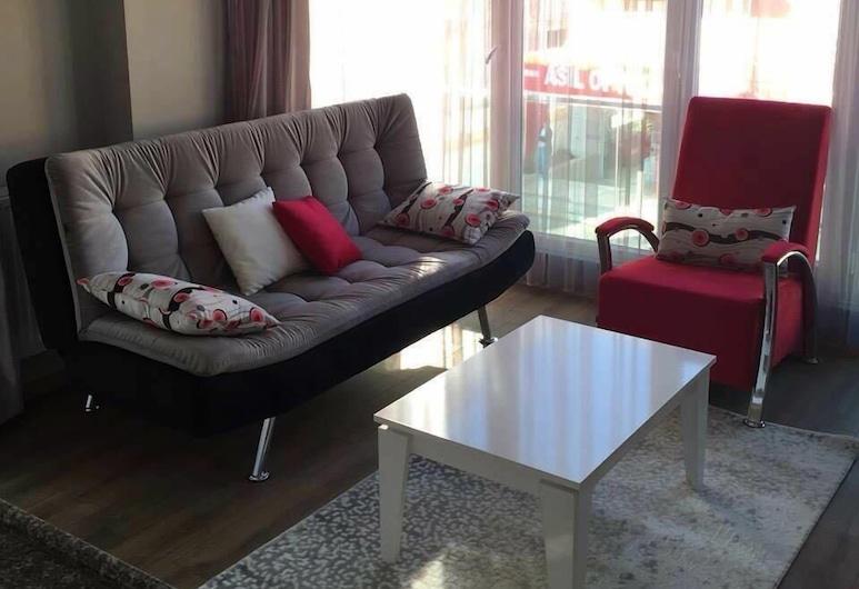 Studio Apart Hotel, Usak, Apartment, 1 Bedroom, City View, Living Area