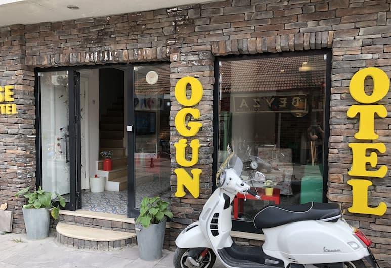 Ogun House Hotel, Sapanca, Hotellfasad